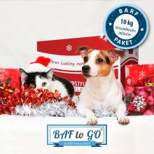 BAF to GO-Christmas Package